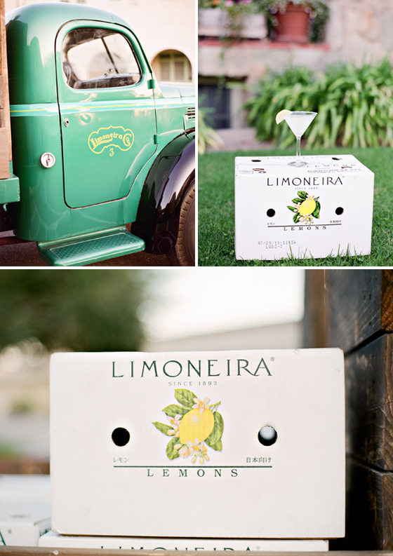 Limoneira Ranch Wedding, Lavender & Twine